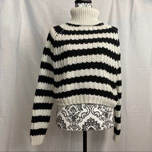 Cropped stripped turtleneck sweater